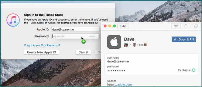 1Password Mini drag-and-drop